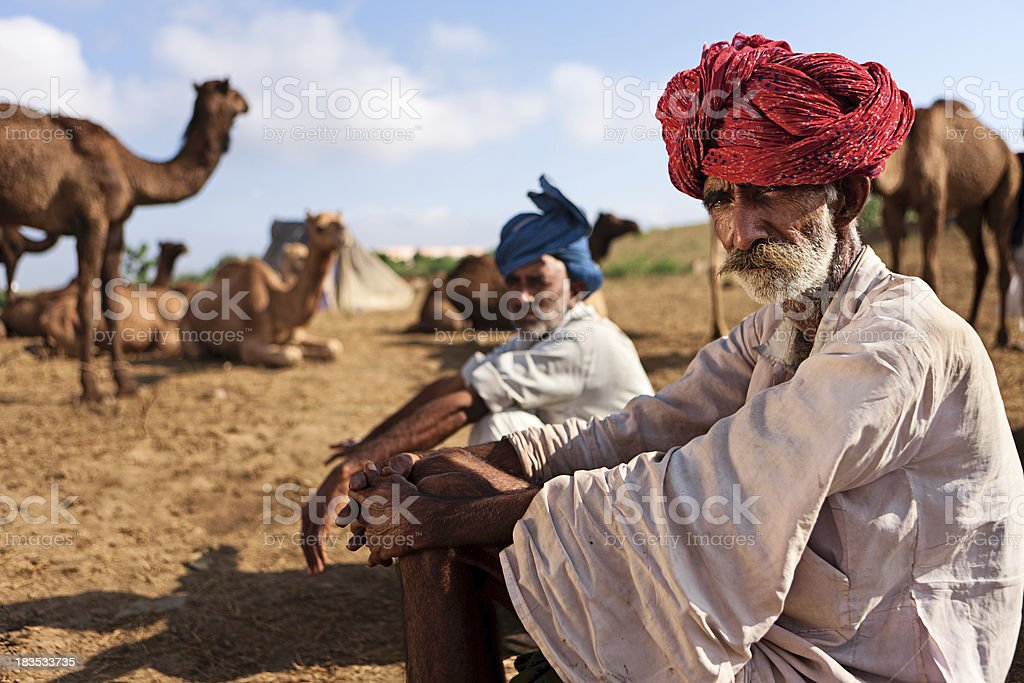 Indian men with camel during festival in Pushkar royalty-free stock photo