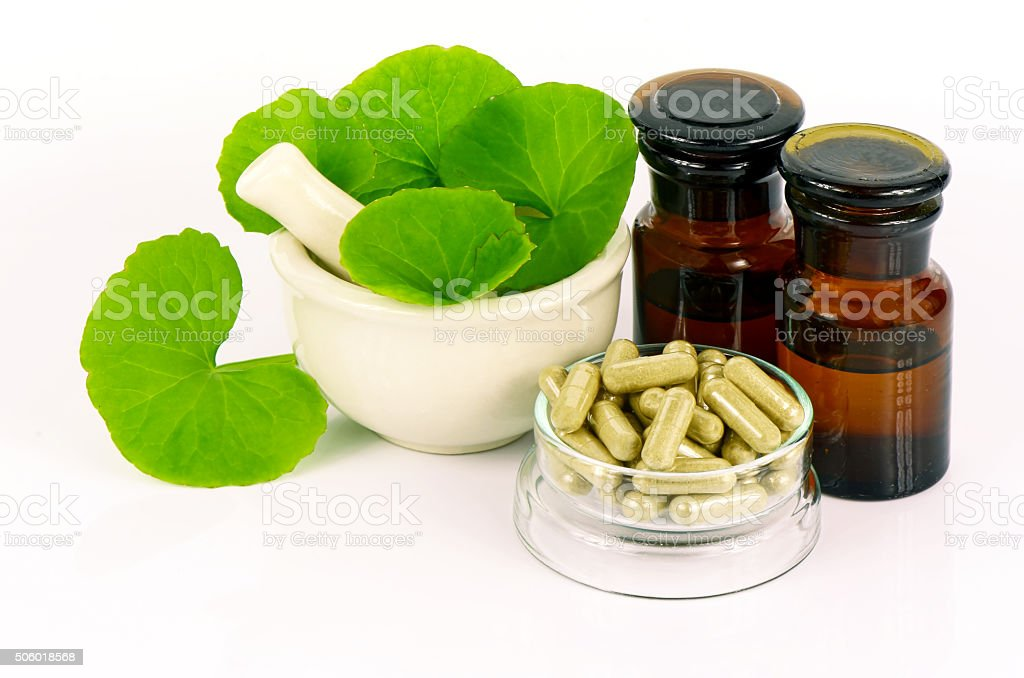 Indian pennywort (Centella asiatica (L.) Urban.) brain tonic her stock photo