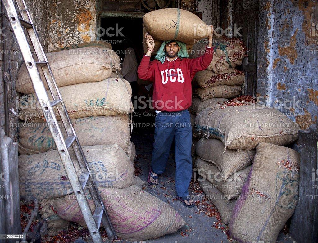 Indian porter in New Delhi, India royalty-free stock photo
