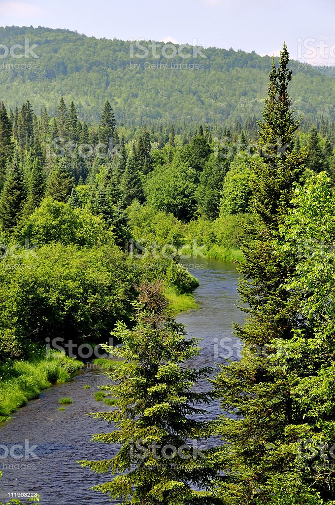 Indian River, Pittsburg NH royalty-free stock photo