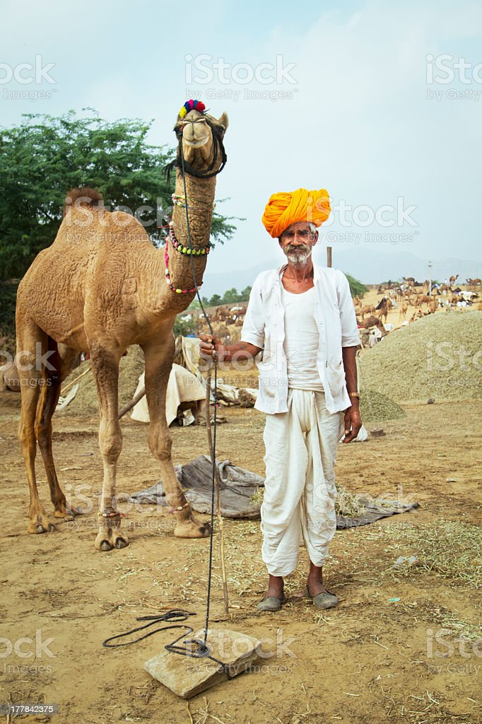 Indian shepherd and his camel royalty-free stock photo