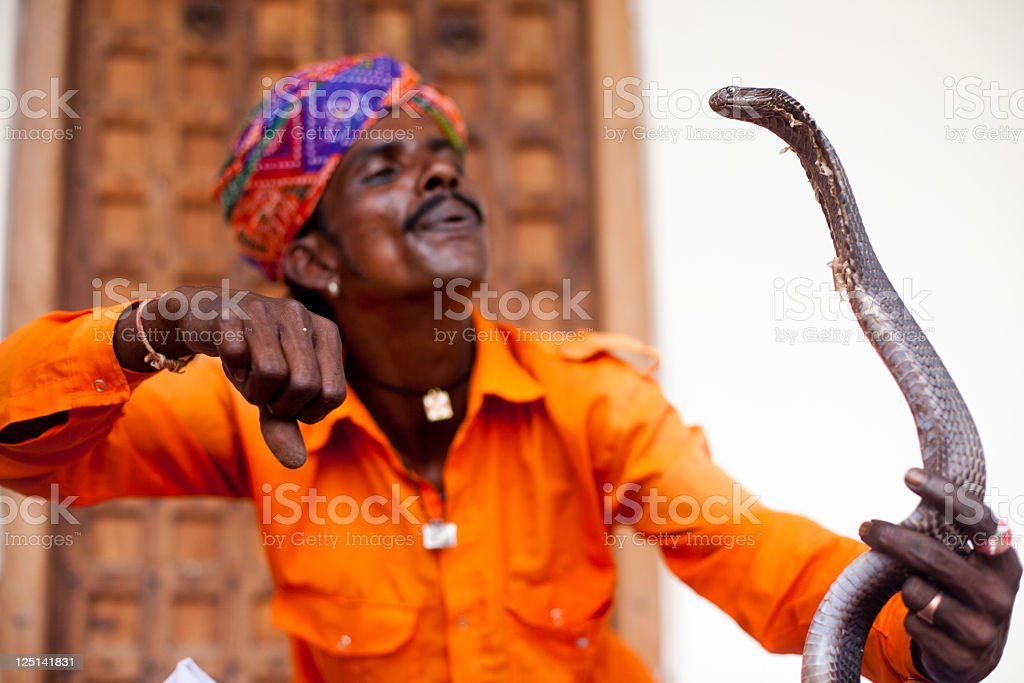 Indian Snake Charmer royalty-free stock photo