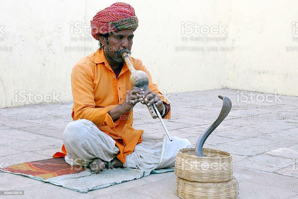 Indian Snake-charmer. stock photo