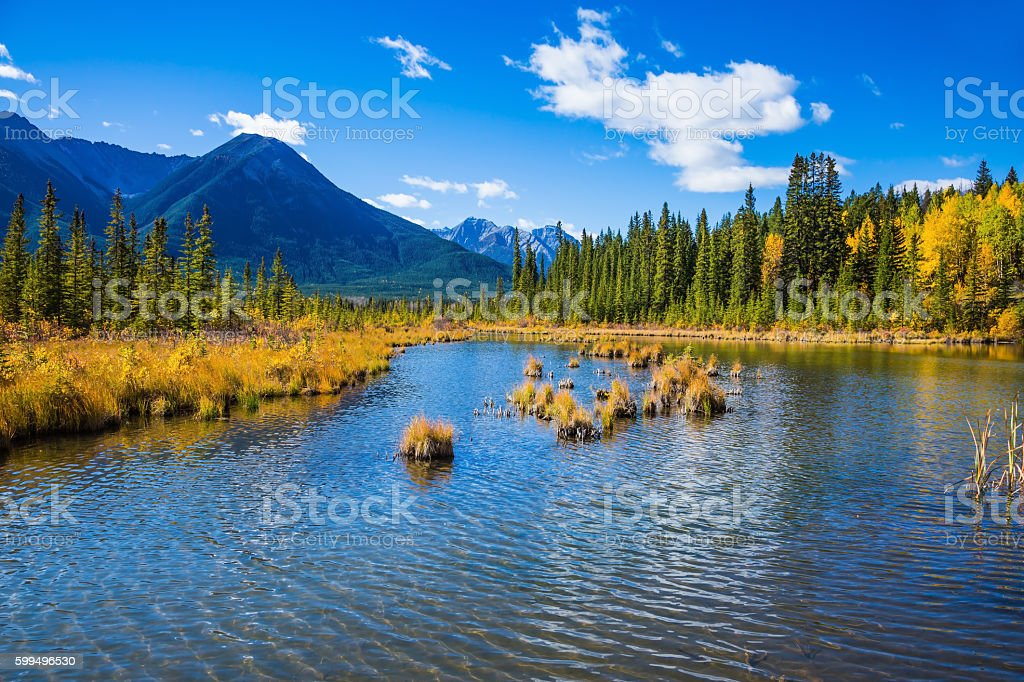 Indian summer in Canada stock photo
