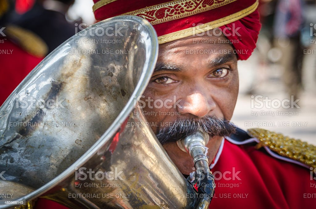 Indian Trumpeter stock photo