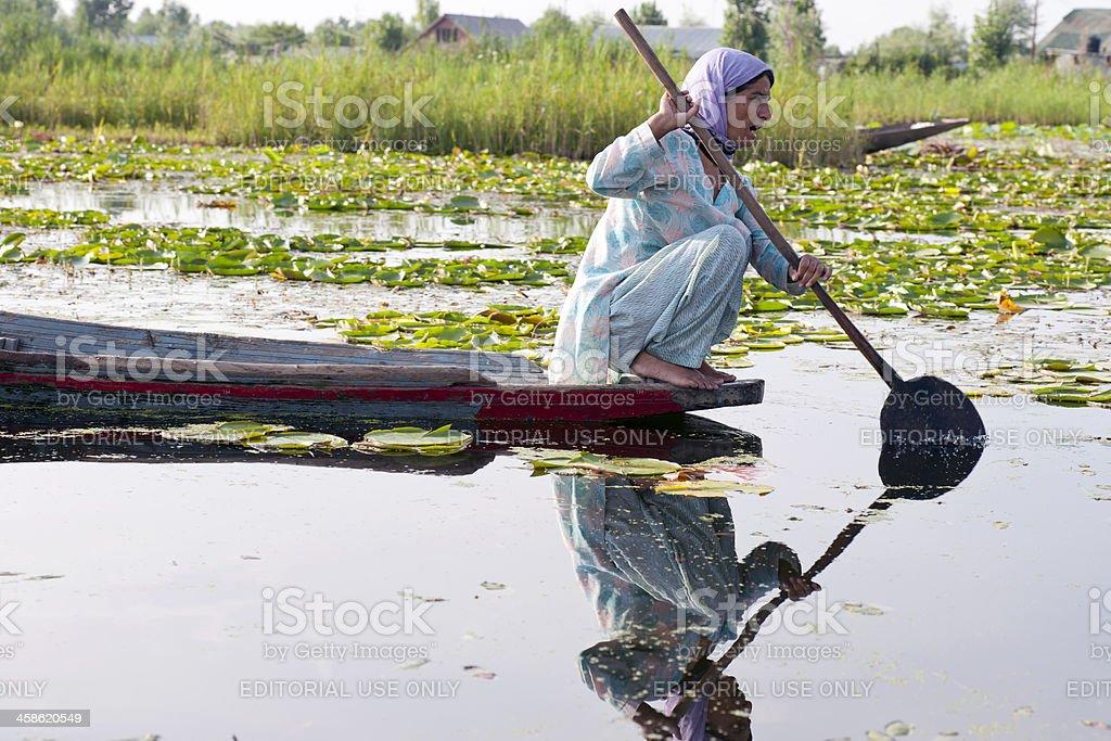 Indian Woman Paddling on Lake Dal Srinagar royalty-free stock photo