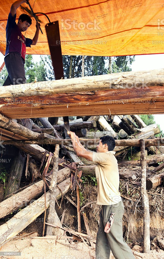 Indians Sawing Trunk with Two-handed Saw Sikkim royalty-free stock photo