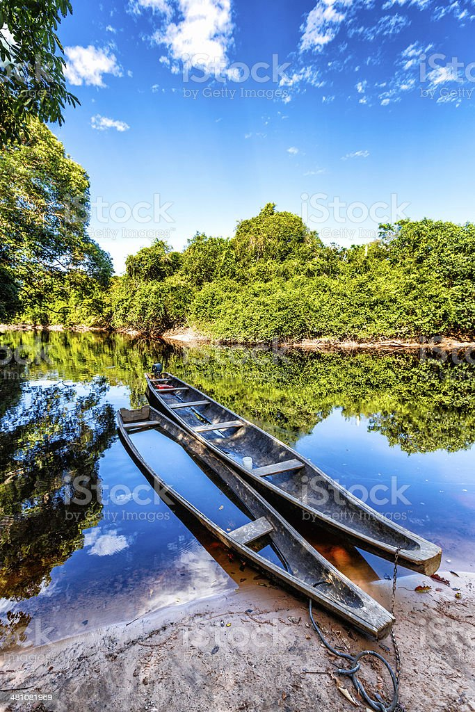 Indigenous canoes on a river in the Amazon state Venezuela stock photo