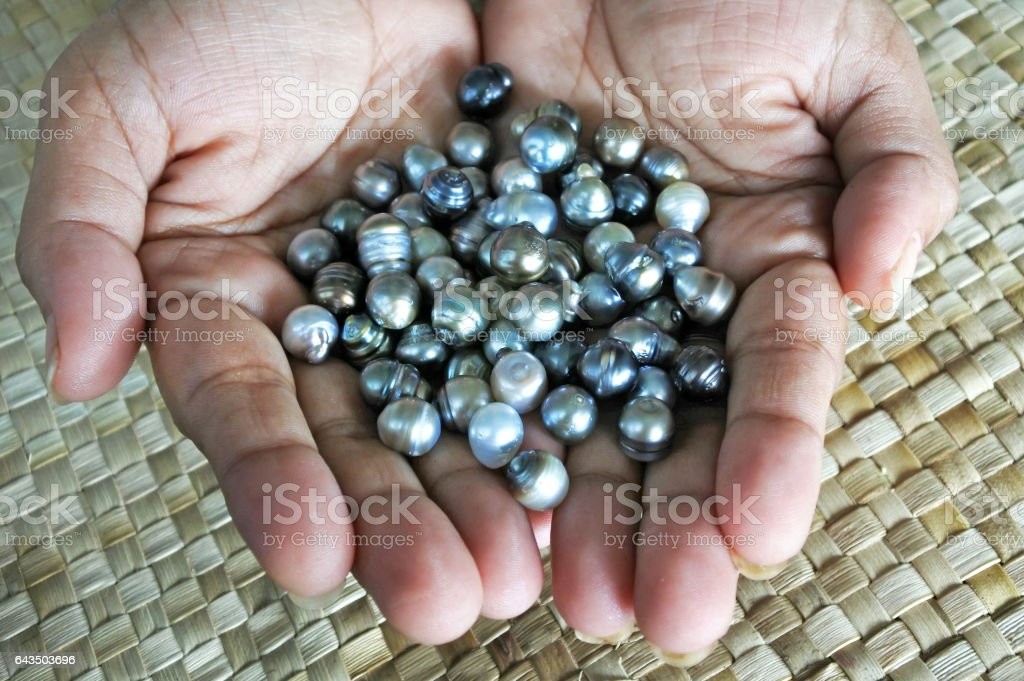 Indigenous Fijian woman holds Black lip oyster black pearls stock photo