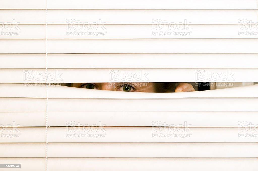Indiscreet eyes. stock photo