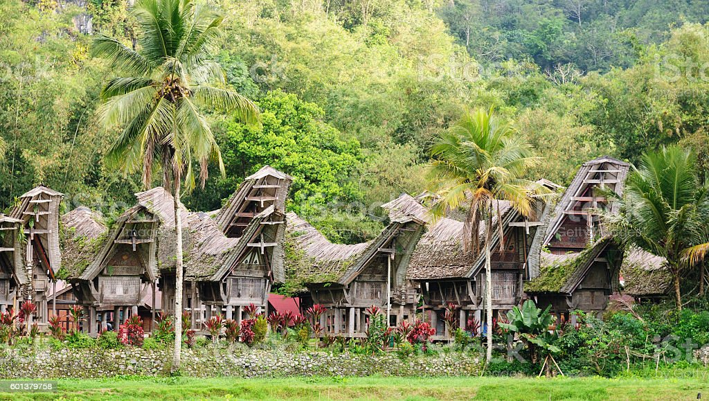 Indonesia, Sulawesi, Tana Toraja, Traditional village stock photo