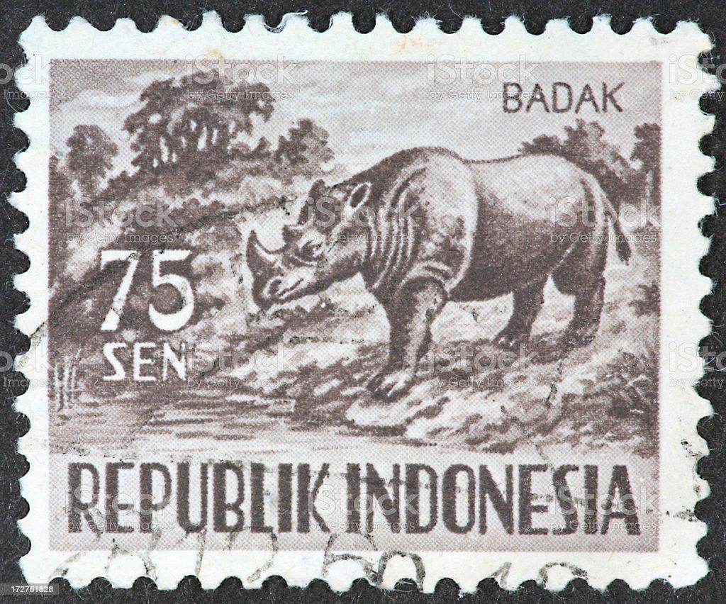 Indonesian rhino royalty-free stock photo