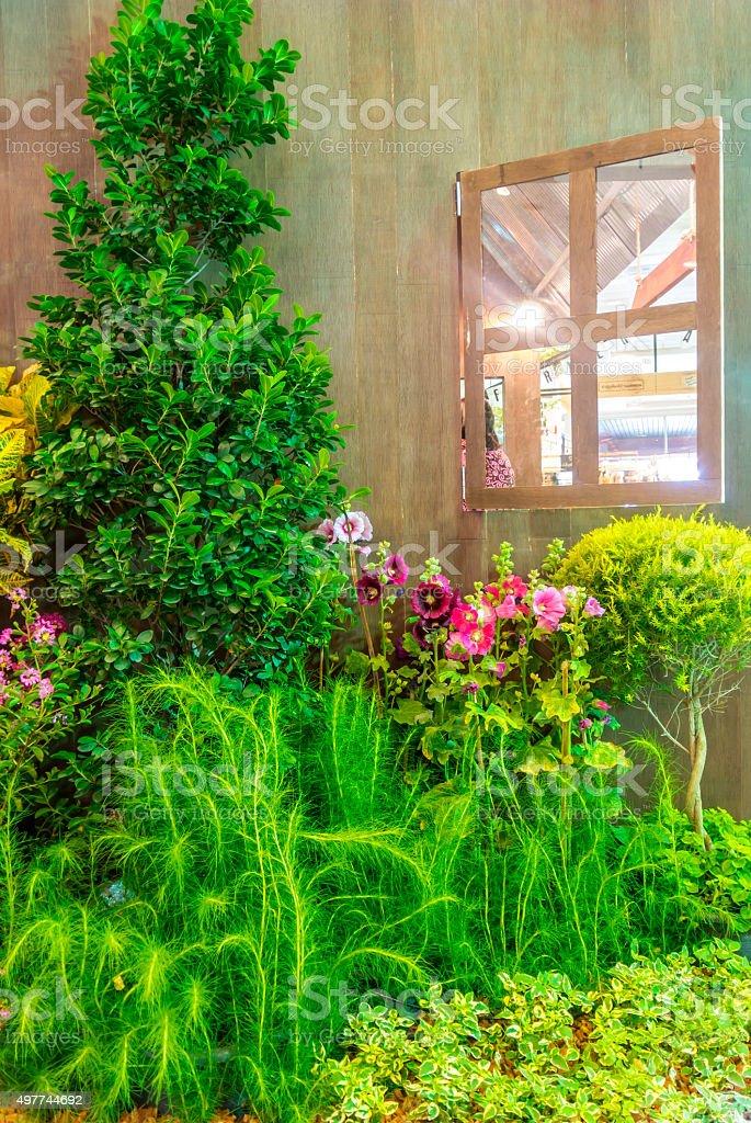 Indoor garden. stock photo