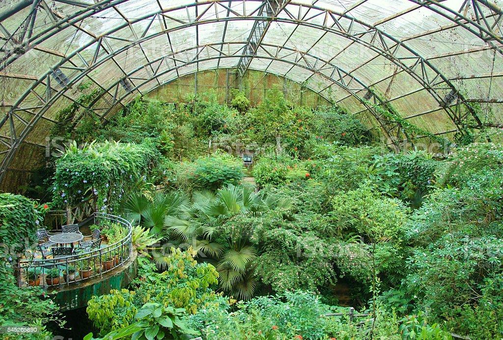 Indoor garden with a balcony overlooking the area foto de stock libre de derechos