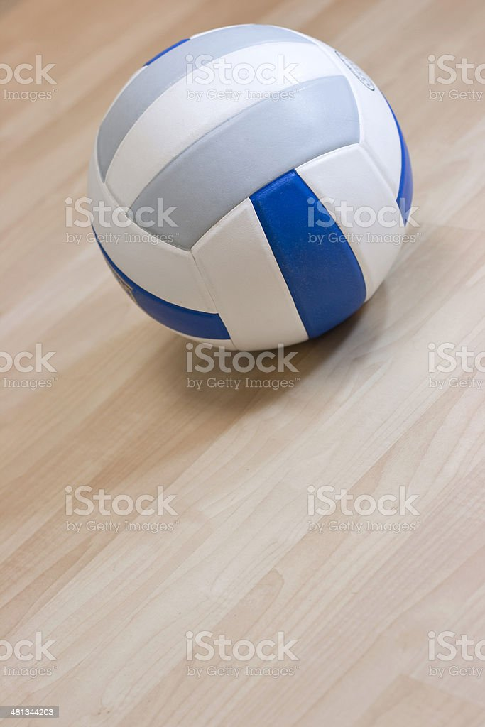 Indoor Volleyball royalty-free stock photo