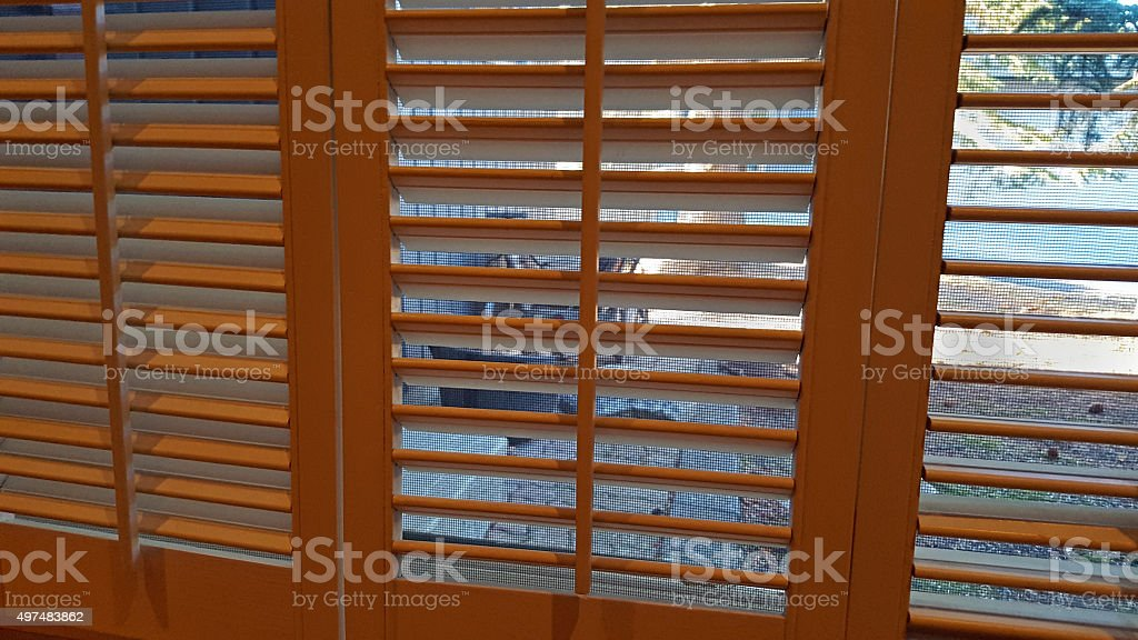 Indoor Wooden Shutters With Mesh Screen And Outdoors stock photo