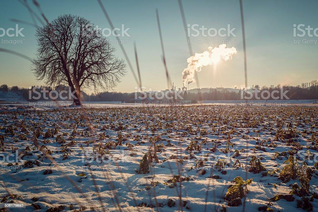 Industrial chimneys smoke winterday stock photo