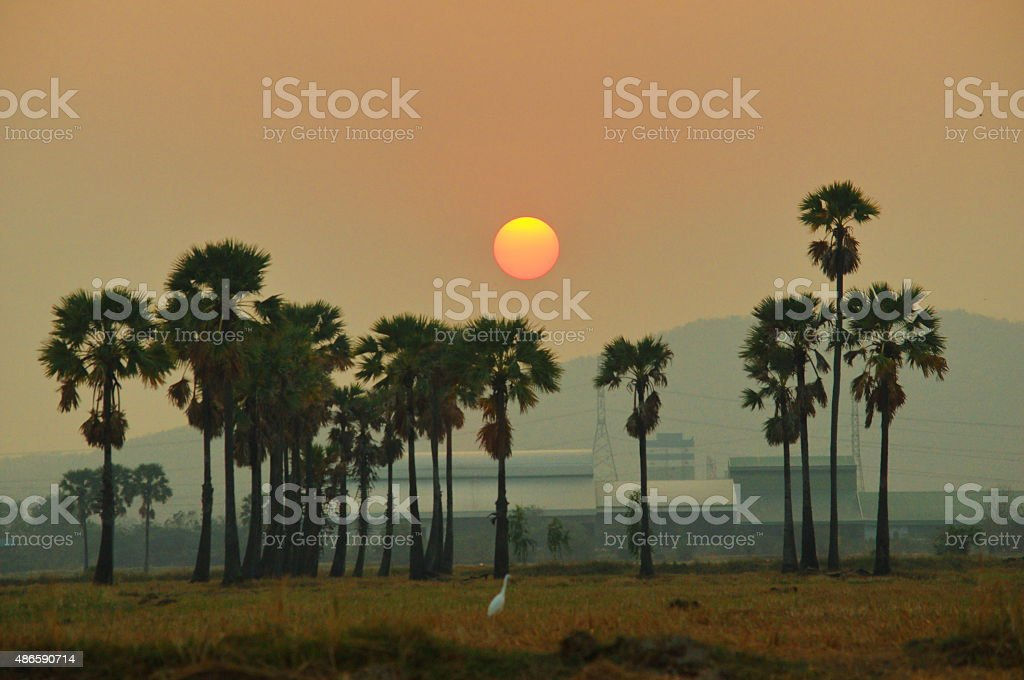 industrial park and agriculture with mountain sunset background stock photo