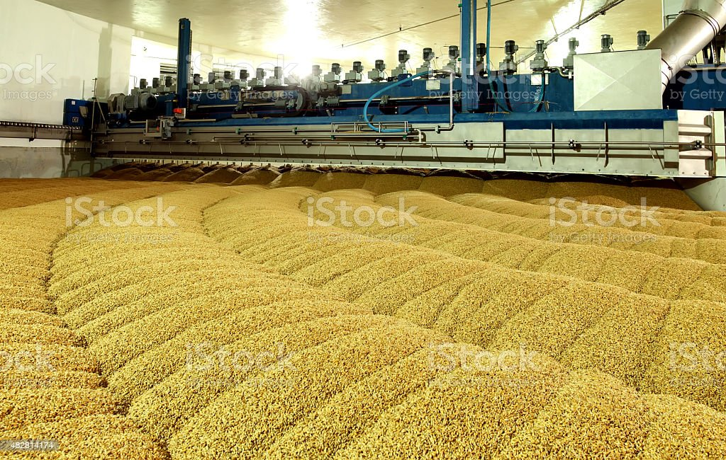 Industrial production of malt. A huge vat stock photo