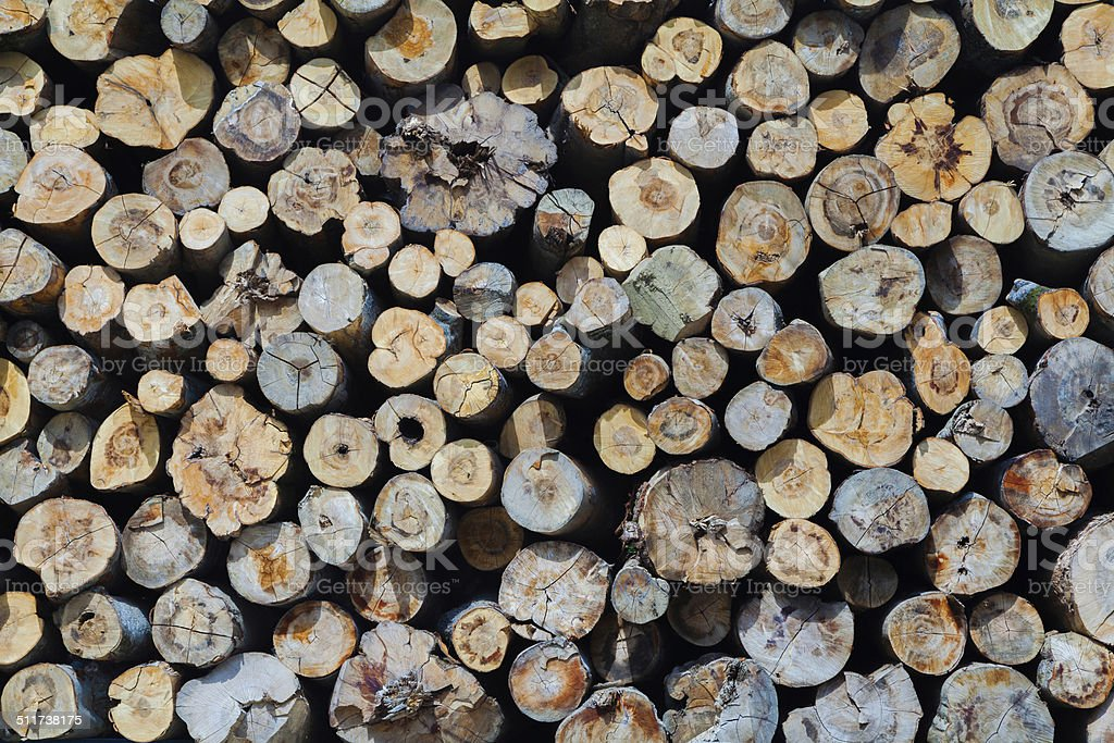 Industrial Timber stock photo