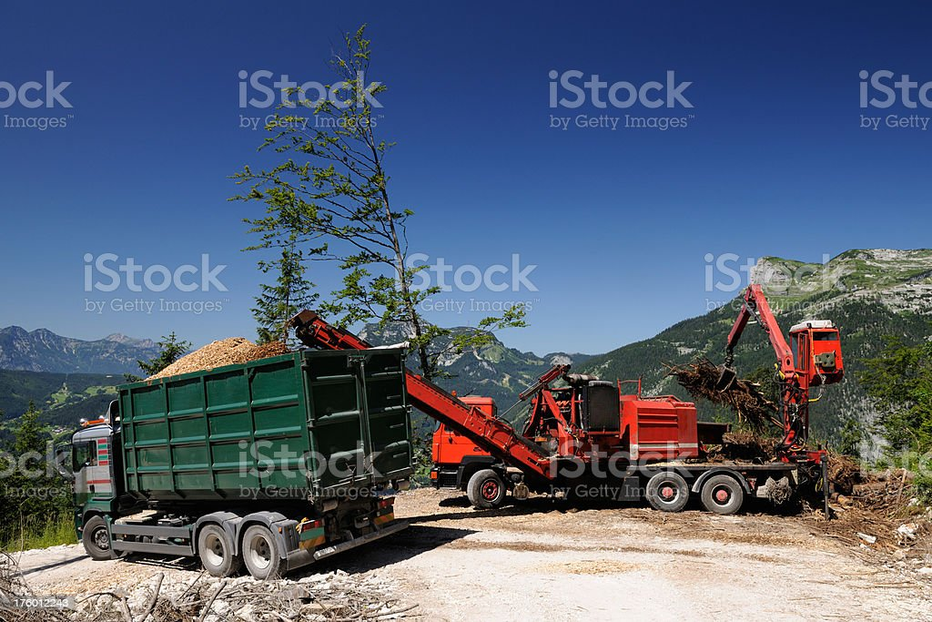 Industrial woodwork - chaffing brushwood and trees for wood pellets stock photo
