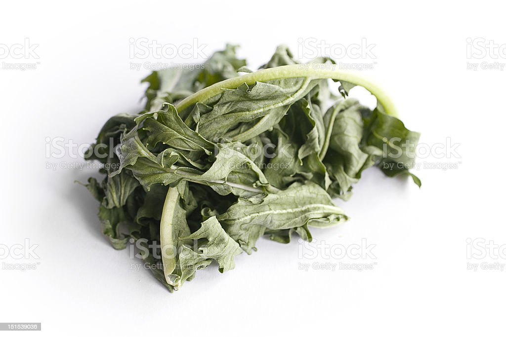 Inedible Lettuce royalty-free stock photo