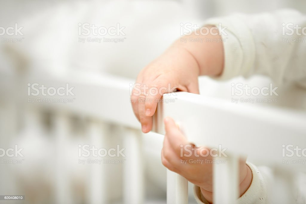 Infant tiny hands in the crib stock photo