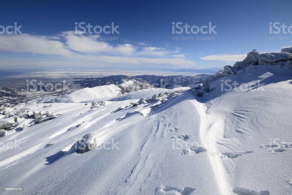 Infinite winter view royalty-free stock photo