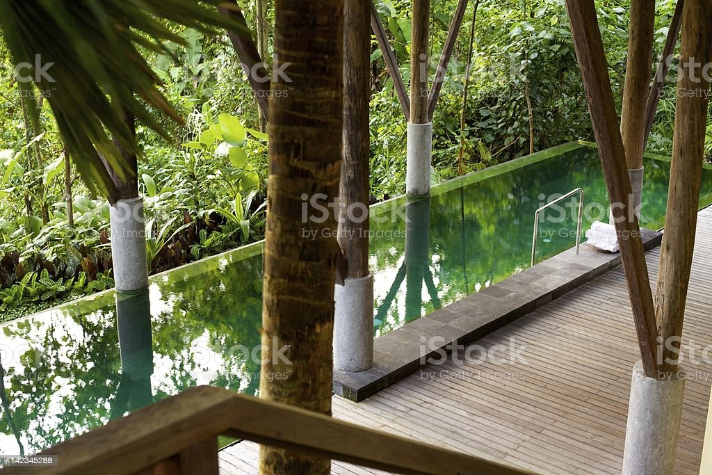 Infinity Lap Pool in a Tropical Luxury Resort stock photo