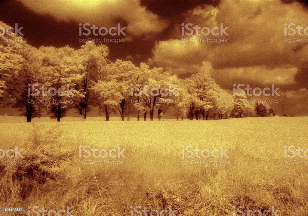 Infra Red Landscape royalty-free stock photo
