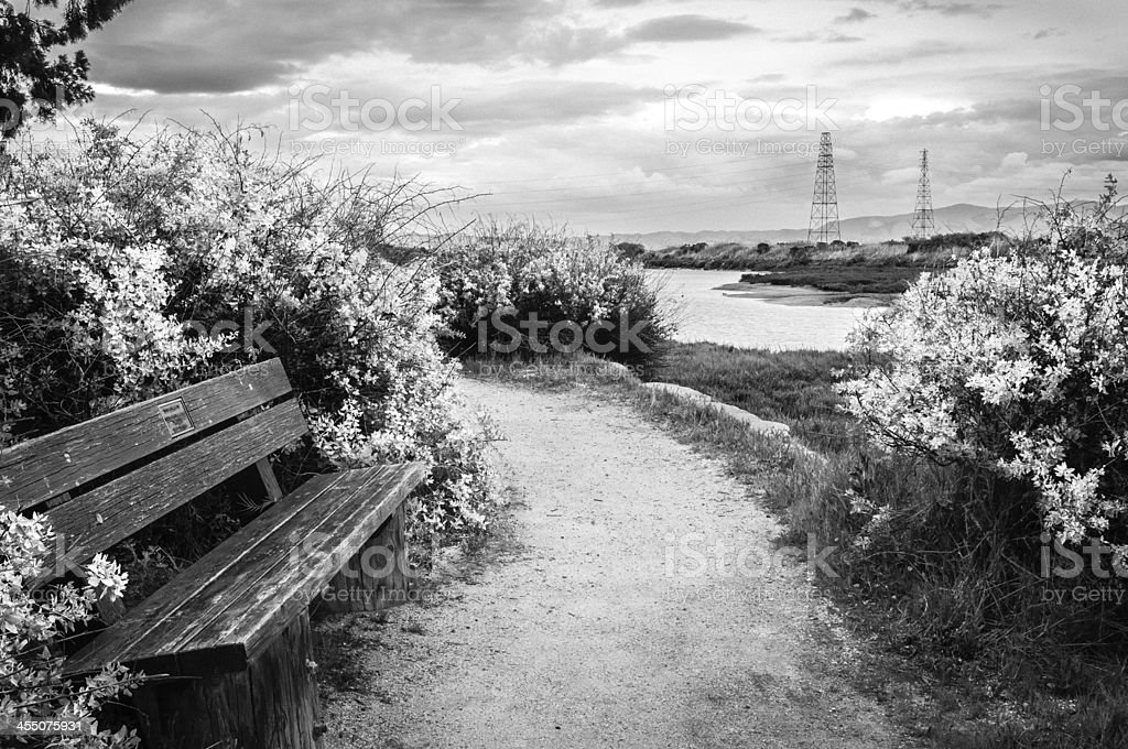 Infrared image of park bench with dramatic sky stock photo
