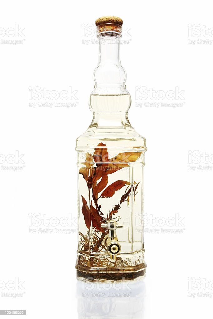Infused Vinegar royalty-free stock photo