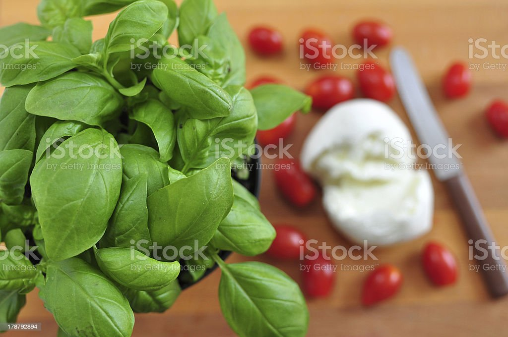 ingredients for caprese salad royalty-free stock photo