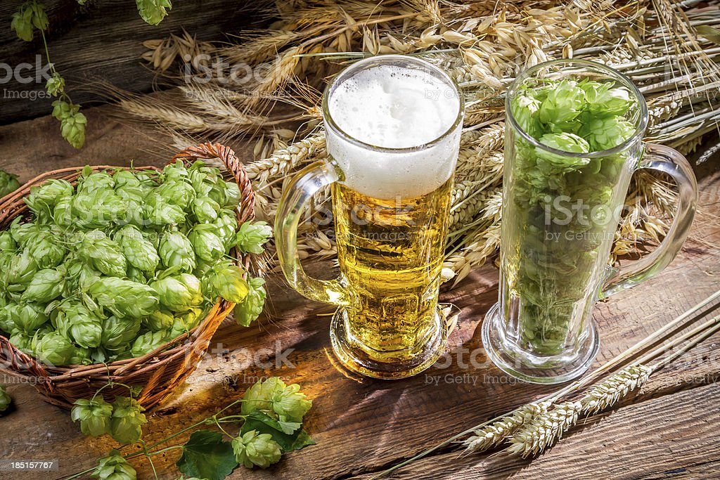Ingredients for the golden beer with a large foam royalty-free stock photo
