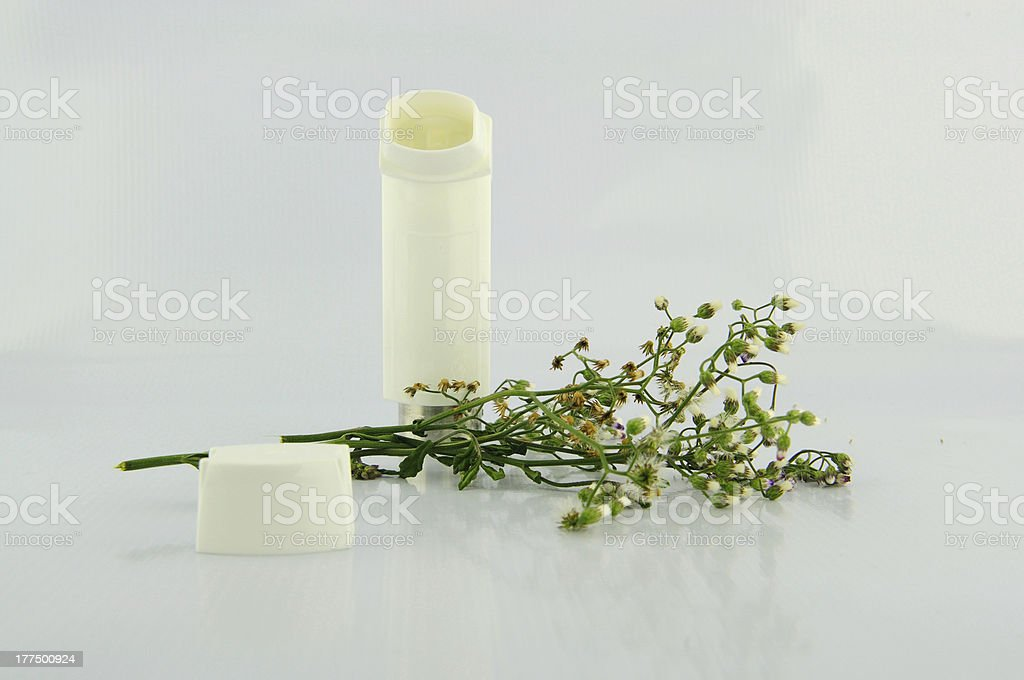 Inhaler and flower of grass royalty-free stock photo