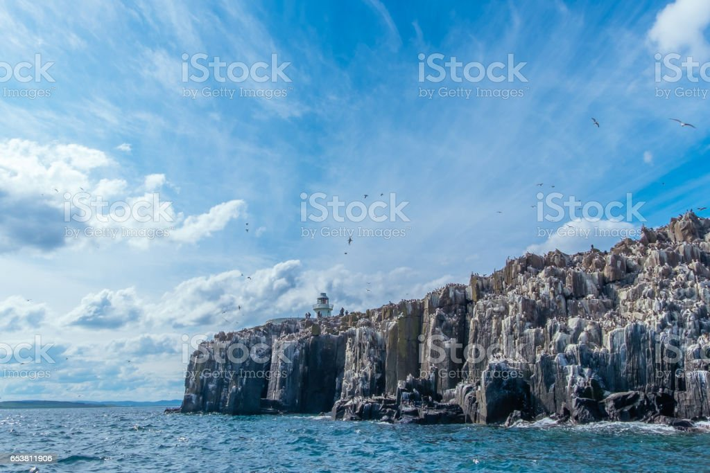 Inner Farne Island stock photo