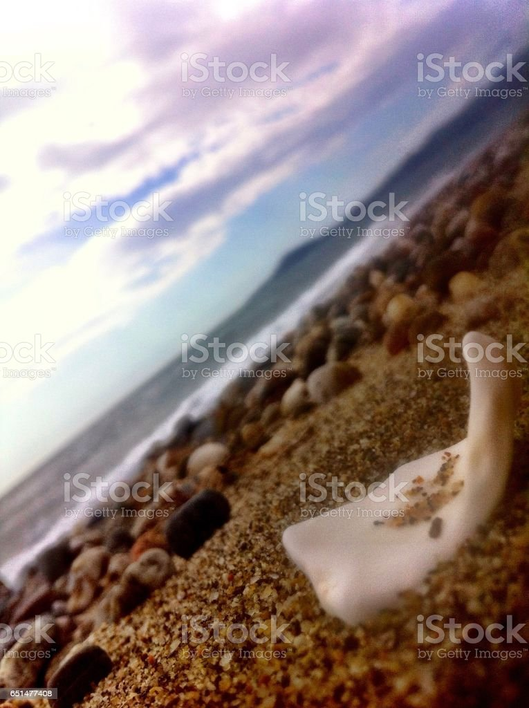 Innocent dream stock photo