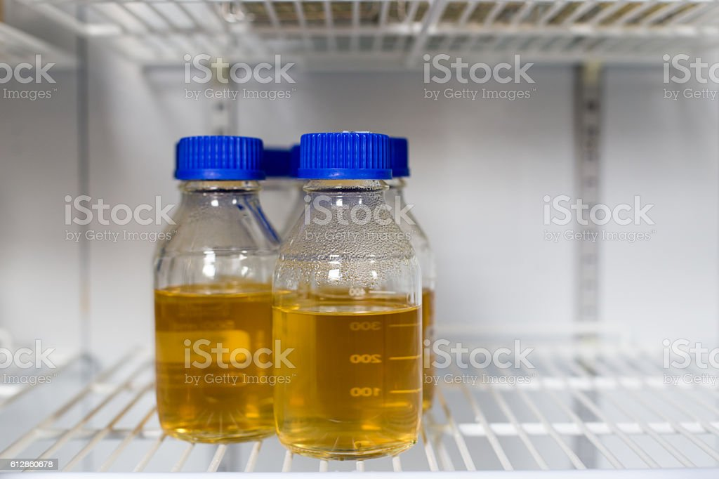 Inoculum in tube soak in the refrigerator stock photo