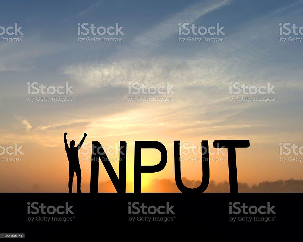 Input success silhouette stock photo