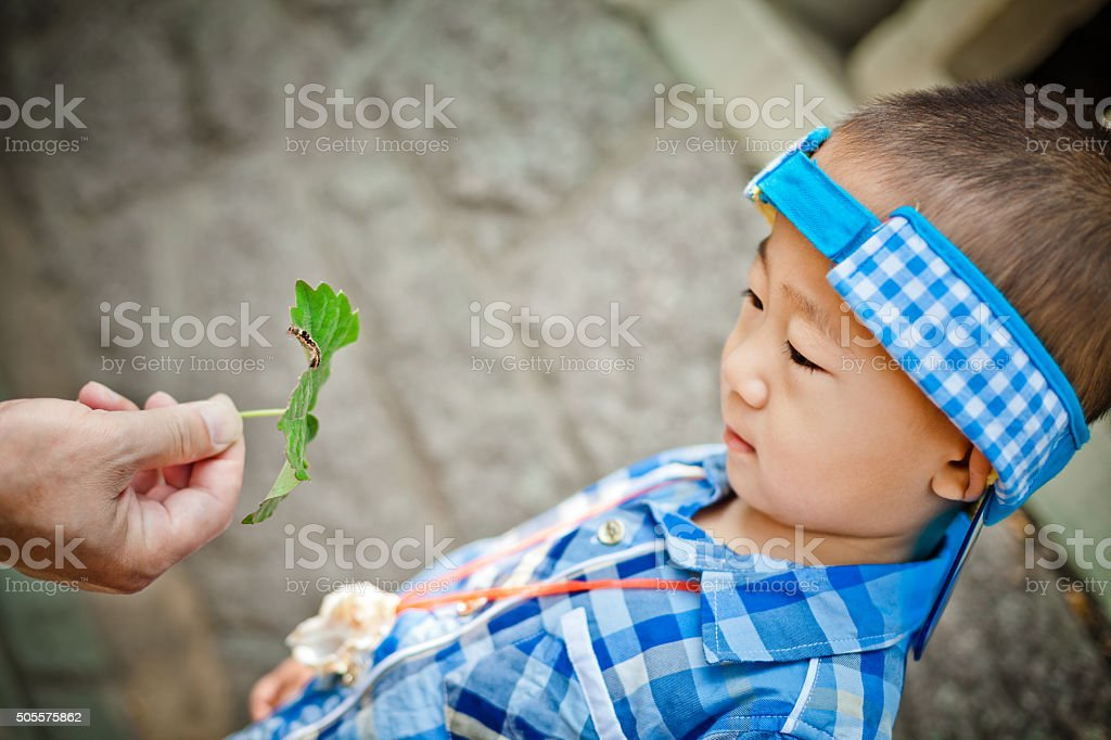 inquisitive boy watching a caterpillar stock photo