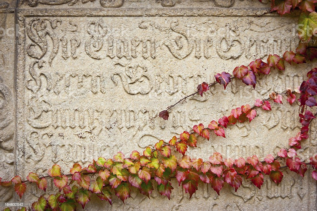 Inscription and Ivy royalty-free stock photo