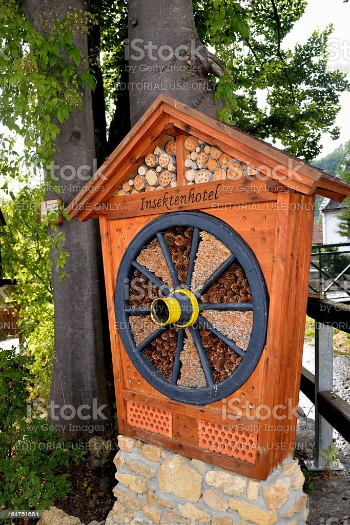 Kirchschlag, Lower Austria, Austria - August 16, 2015: Insect hote stock photo