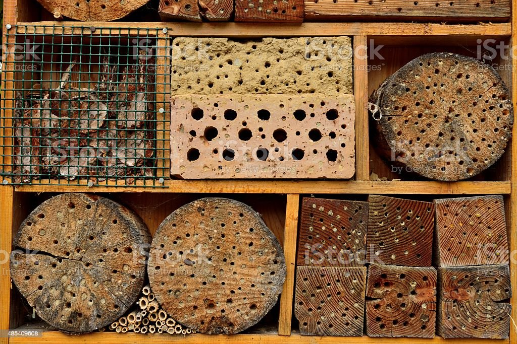 Insect hotel in the forest stock photo