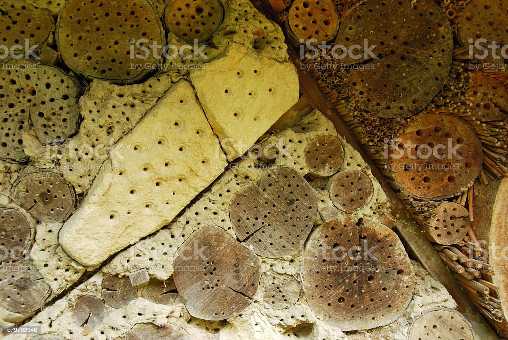Insect hotel provide for shelter insects. stock photo