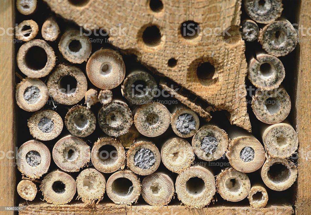 Insektenhotel - hotel insect shelter stock photo