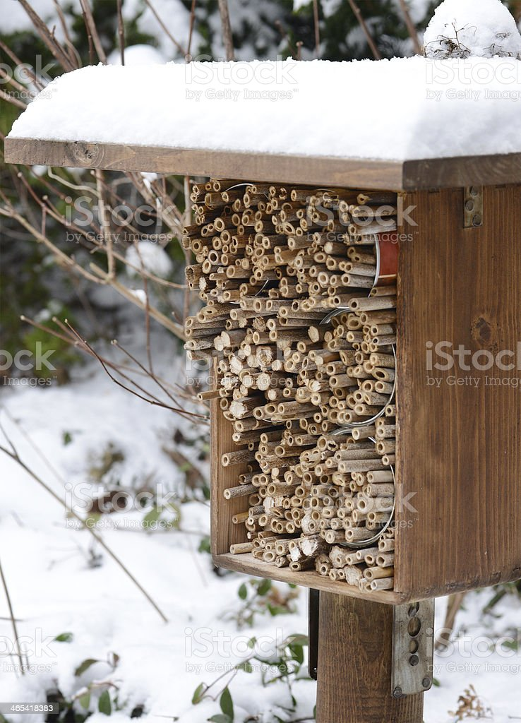 Insektenhotel - hotel insect shelter royalty-free stock photo