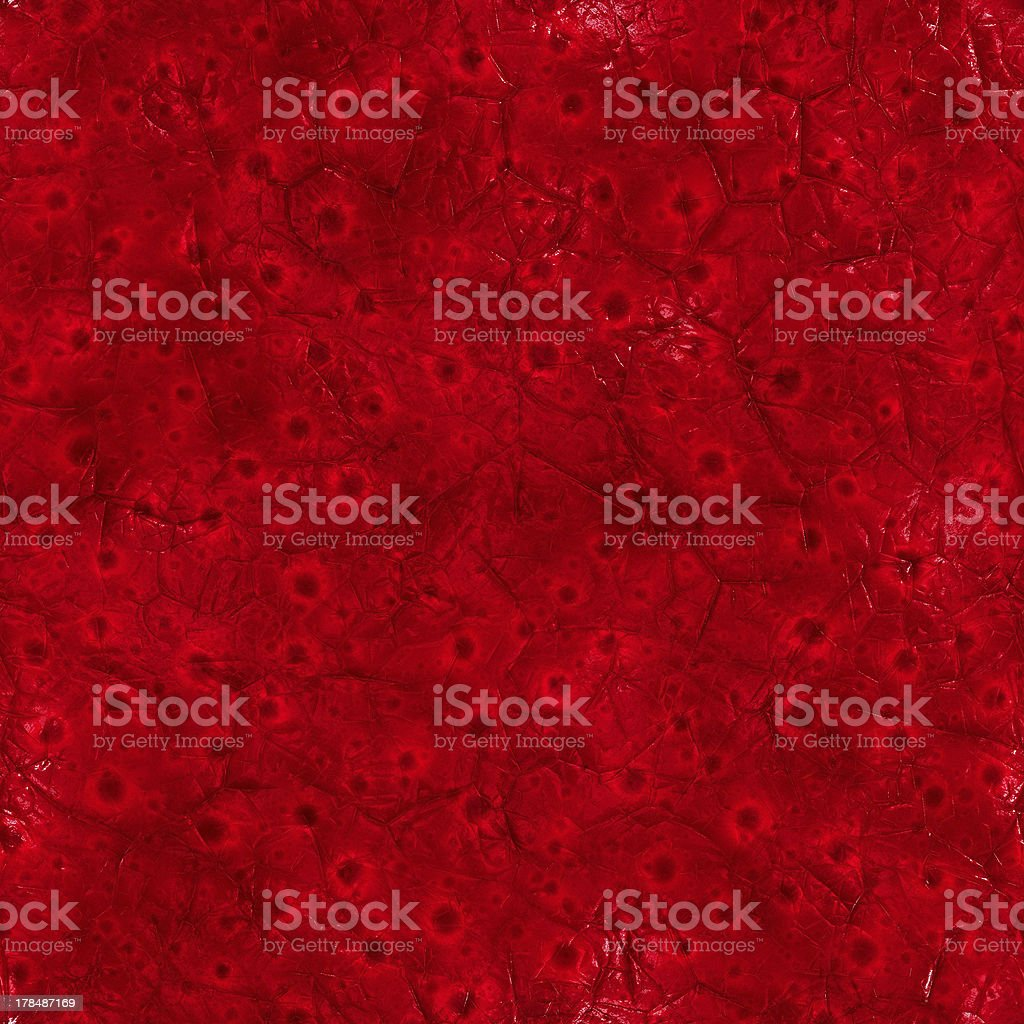 Inside body (Seamless texture) stock photo