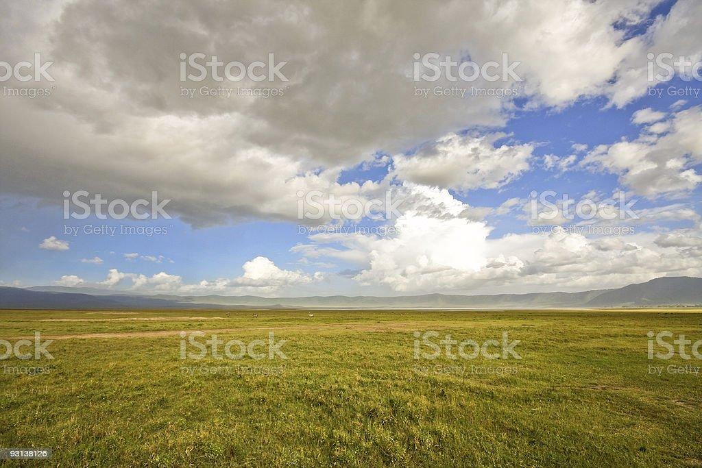 Inside Ngorongoro Crater royalty-free stock photo