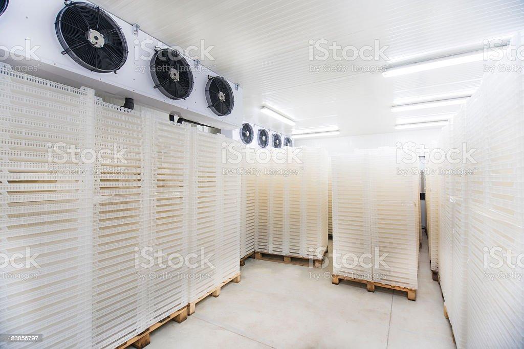 Inside of Big Industrial Refrigerator Storage at -30 Celcius stock photo