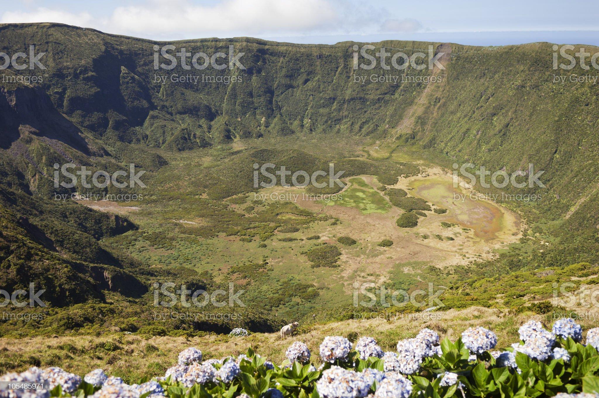 Inside of Caldeira volcano in Faial, Azores royalty-free stock photo